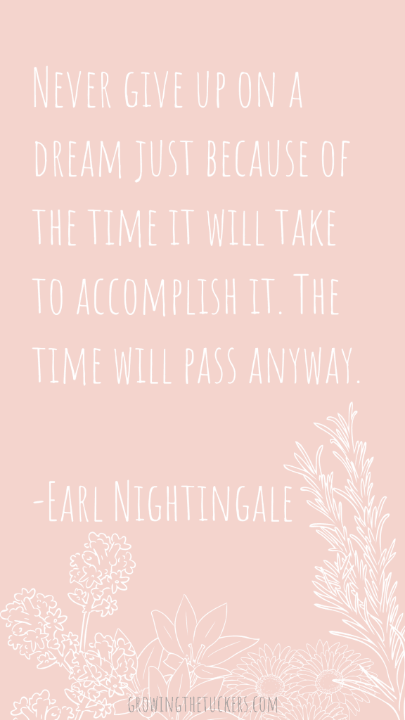 Never give up on a dream just because of the time it will take to accomplish it. The time will pass anyway. Earl Nightingale