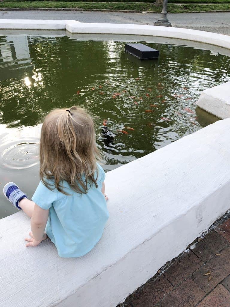 Little girl looking at fish in a fountain