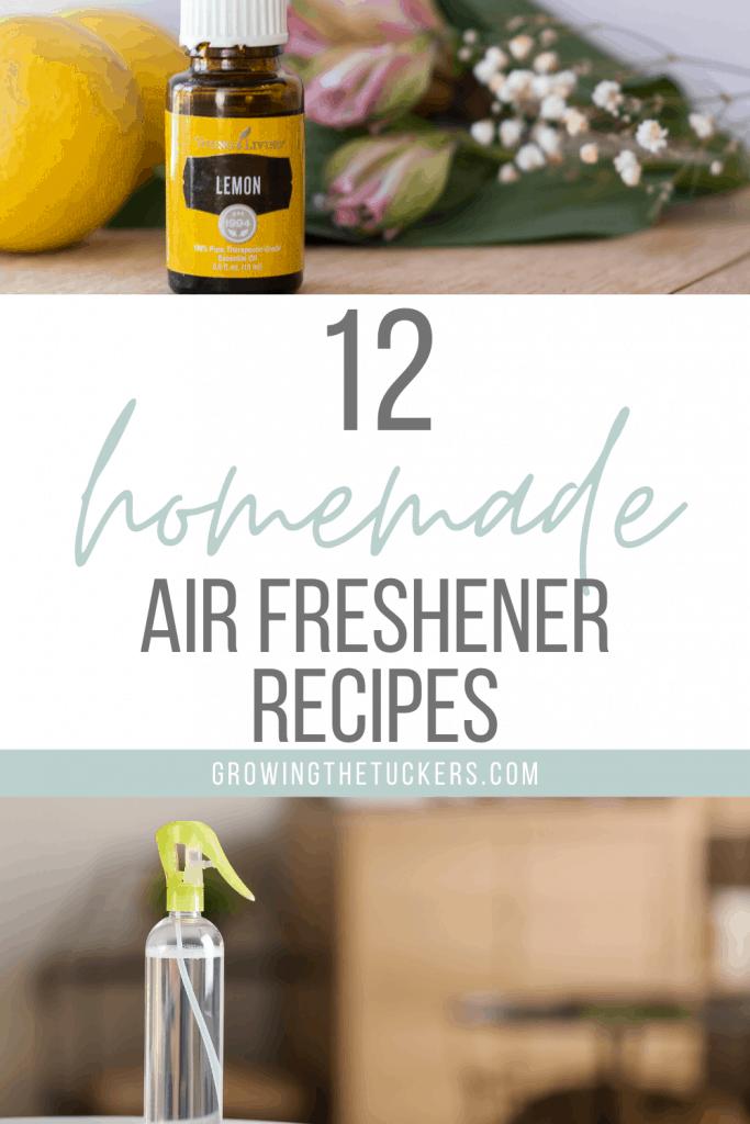 12 Homemade Air Freshener Recipes